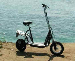 Electric Scooter by LashOut-600Waatt and 400 Watt versions available